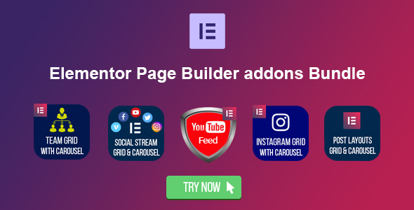 Elementor Page Builder - Meet the Team Grid with Carousel - 4